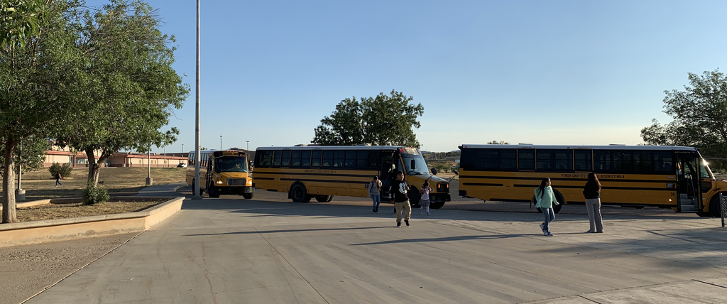 Buses Arrive
